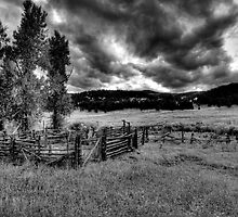 Corral In Mountain Meadow by tgarrett