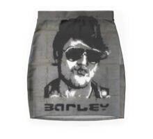 Barley, 2014 Mini Skirt
