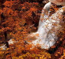 Brandywine Falls  by Sandy Woolard
