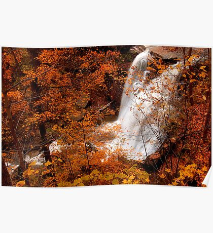 Brandywine Falls  Poster
