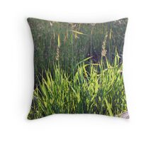 Backlit grass Throw Pillow