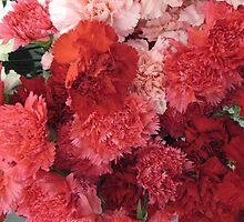 Carnations Anyone? by MarianBendeth