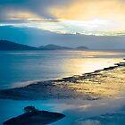 Hamilton Island Sunrise by Nadean Brennan