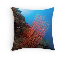 Red Sea Whips - Osprey Reef Throw Pillow