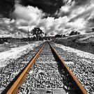 The Journey Begins.... by Michael  Bermingham