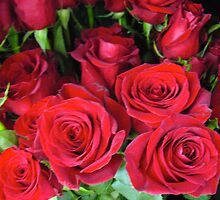 Wrapped Around My Heart Roses by MarianBendeth