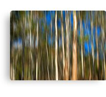 Among The Gum Trees Canvas Print