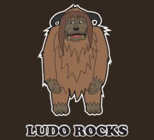 Ludo Rocks by aconyers