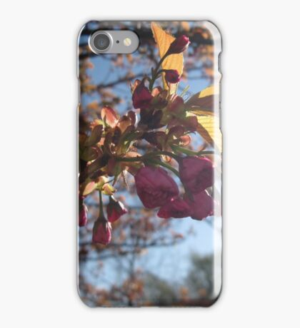 Macro iPhone Case/Skin