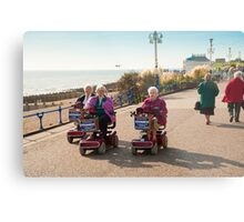 Silver Haired Racers Metal Print