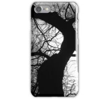 Branched Mantel iPhone Case/Skin