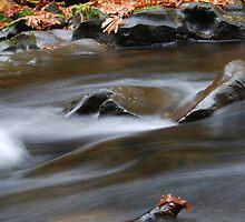 Smooth water by Jennifer Hulbert-Hortman