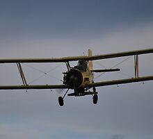 vintage biplane by John E. McAlear