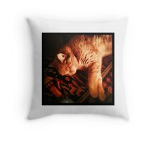 Sleeping Ginger Tom Cat Throw Pillow
