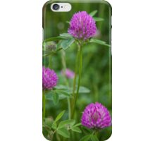wildflowers in the filed iPhone Case/Skin
