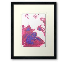 Katie The Wonder Dog Framed Print