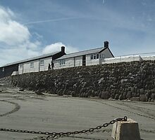 Harbour At Lyme Regis by lynn carter