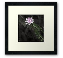 Pathway to the Crown Framed Print