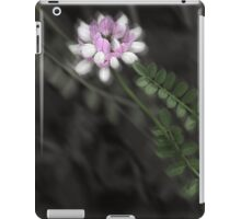 Pathway to the Crown iPad Case/Skin