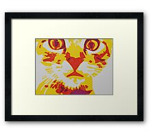 Wide Eyed Pussy Cat Framed Print