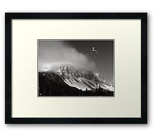 No One Could Jump Like Ed Framed Print