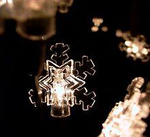 Snowflake Crystal Lights by Rowan  Lewgalon