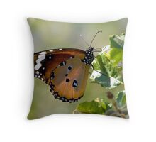 African Monarch Butterfly Throw Pillow