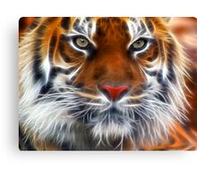 Lord of the Indian Jungles Canvas Print