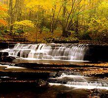 Water-falls -Tumbling Creek  by drop-thumb