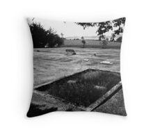 saint francis cemetery Throw Pillow