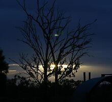 Dusk in Central Queensland by MrsStraubs