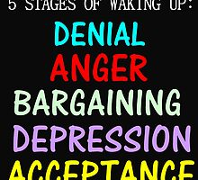 5 STAGES OF WAKING UP by Divertions