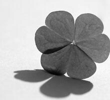 a little bit of luck by Anne Seltmann