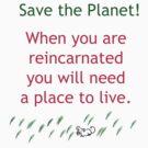 Reincarnation by Betty Mackey