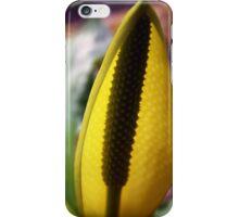 Radiant Skunk iPhone Case/Skin