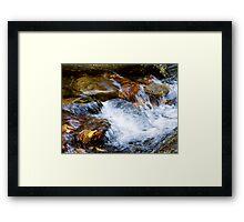 Fall Rush Framed Print
