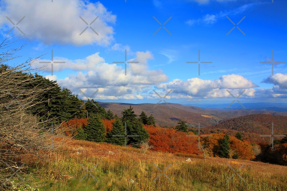A view from White Top by Linda Costello Hinchey