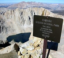 Trail Crest - Mount  Whitney by Rebecca Sowards-Emmerd