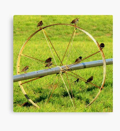 Birds On A Wheel Canvas Print