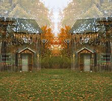 Trees and a Studio by dduchow