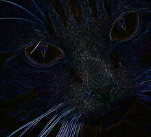 The Dark Side Of Kitty by L. Haverkamp