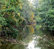 The River of Melancholy by Ritva Ikonen