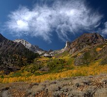 Mount Baldwin and McGee Creek Fall Colors by Rebecca Sowards-Emmerd
