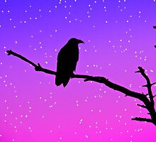 Raven at Dusk by Heather Haderly