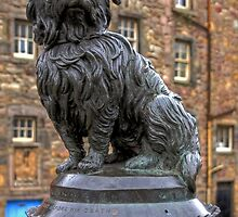Greyfriars Bobby by Tom Gomez