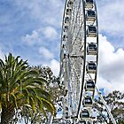 Ferris Wheel - Perth Foreshore by mattsibum