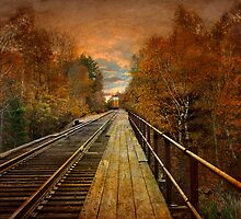 A Walk on the Tracks by Tizme