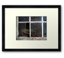 On The Dark Side Of The Window Framed Print