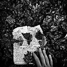 Telegram by dreikelvin