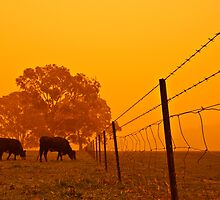 Dust Storm at 6.45am by Snaperture